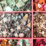 Evento Conad - materiali per creazioni dei bambini, conchigliette, fiori secchi, legnetti